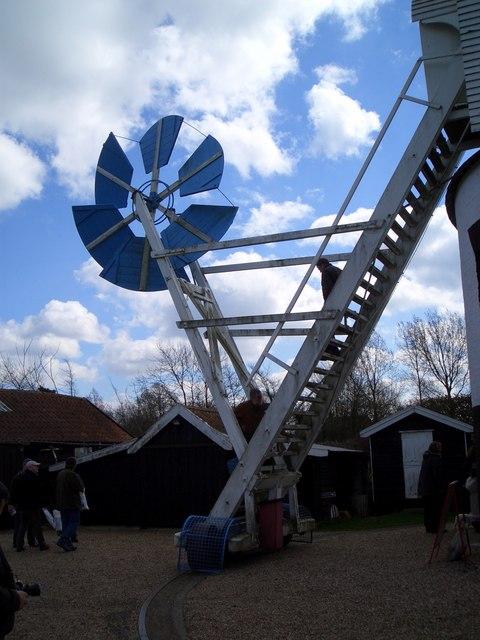 Fantail, Saxtead Green windmill