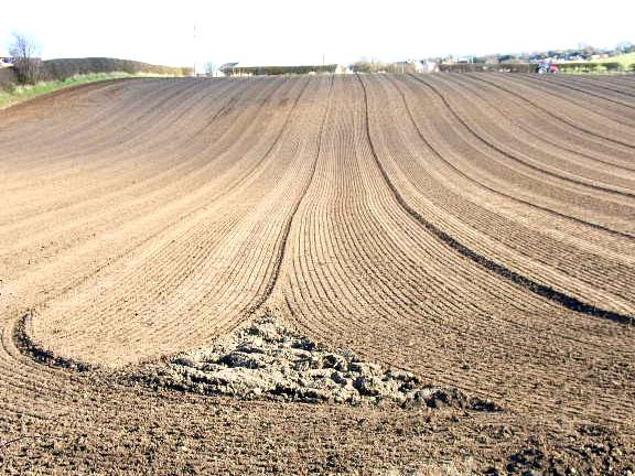 Newly harrowed field, Cookshold Lane, Sherburn