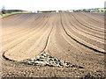 NZ3342 : Newly harrowed field, Cookshold Lane, Sherburn by Oliver Dixon