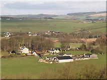 NZ0559 : Hindley near Stocksfield by Clive Nicholson