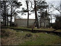 NJ6463 : Ruined Church,Boyndie. by Christopher Gillan