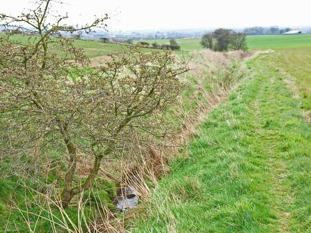 Ditch near Hett Moor Farm