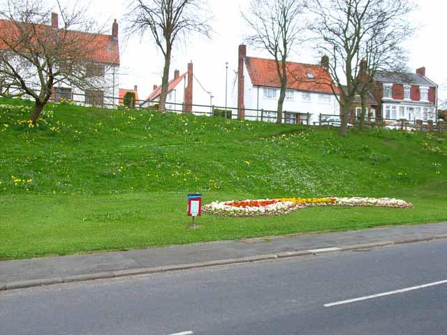 Spring flowers at Bishop Middleham