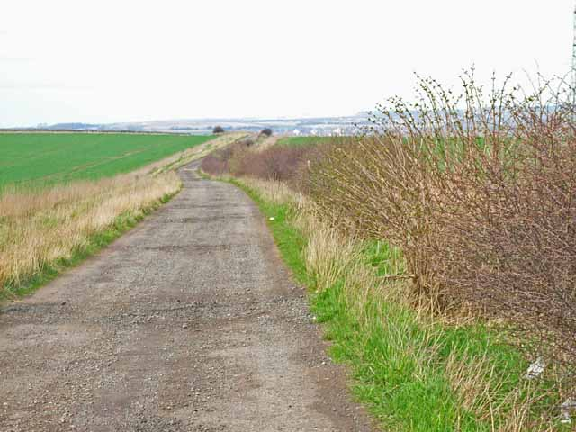 Farm road to Garmondsway from Harrap Hill