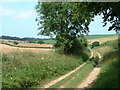 TF7235 : Peddars Way, Norfolk. by Andy Peacock