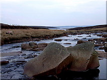 NY7831 : River Tees by Andrew Smith