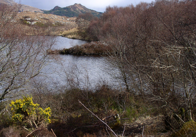 Loch Palascaig