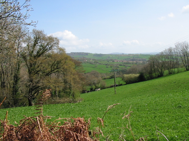 Farmland to the east of Mill Lane, near Penn