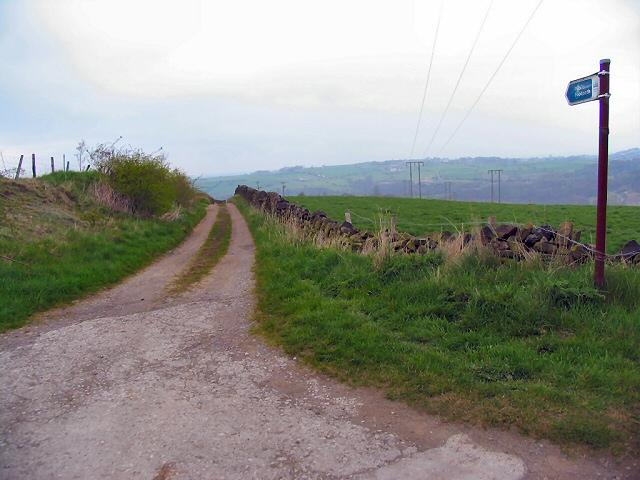 Towards Blackmoor Common