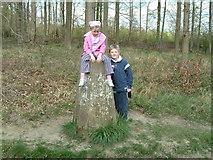 SP8906 : Triangulation pillar, Great Widmoor Wood by Rob Farrow