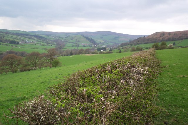 Bridleway from Upper Rabber towards Gladestry