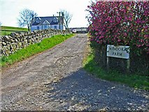 NX3058 : Mindork Farm by Oliver Dixon