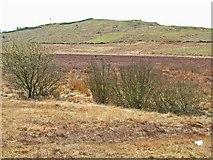 NX3063 : Moorland near Culvennan Fell by Oliver Dixon