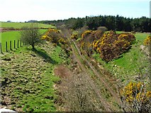 NX3362 : The old Dumfries to Stranraer railway by Oliver Dixon