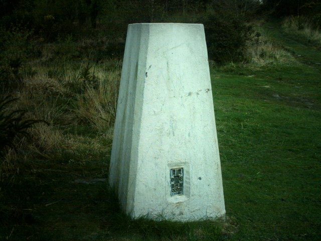 Tidenham Park Triangulation Pillar S3378