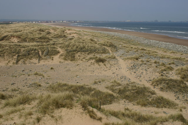 Dunes at Seaton Sands