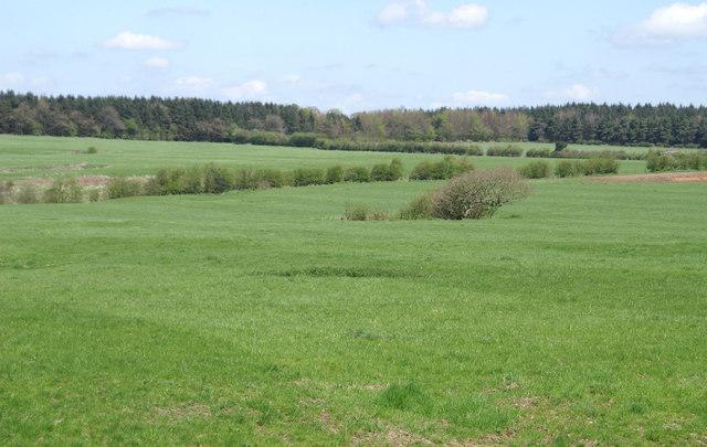 Field, Where Roman Road Once Ran