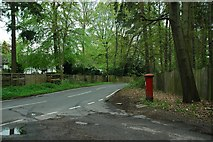 SU9266 : Spring Green in South Ascot by Colin Haywood-Gray