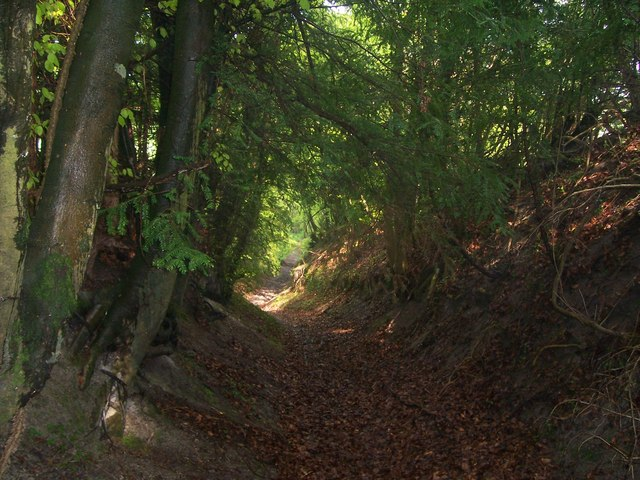 Path up to Warren Lane, Reston Hanger, Oakshott
