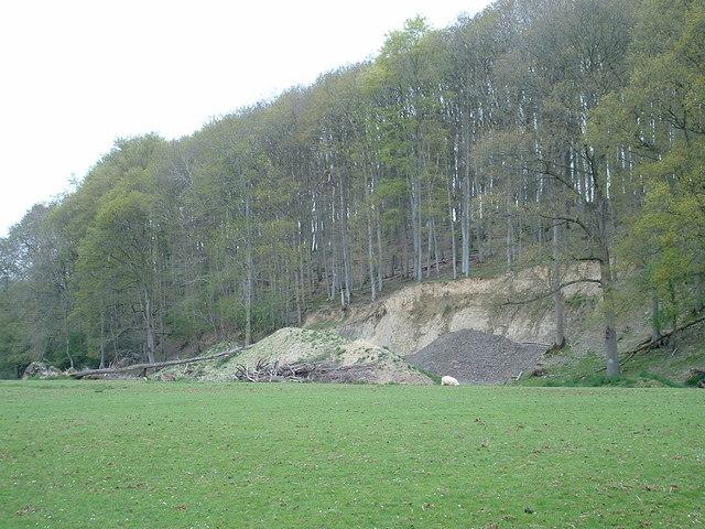 Church Wood Landslip