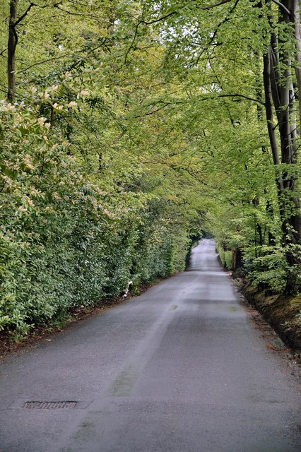 Windlesham - So Very Green