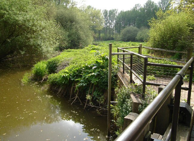 Feeder Stream, Brewhurst Mill
