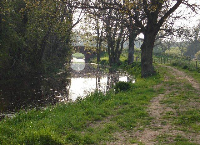Drungewick Bridge and Wey and Arun Canal