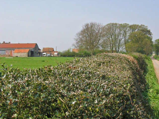 Garthorth Hall Farm