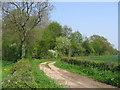 SE7578 : Track SE of Great Barugh by Stephen Horncastle
