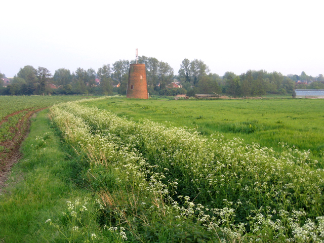 Disused tower windmill, Shefford, Beds