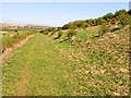 NZ3346 : Footpath on old railway leading to High Moorsley quarry by Oliver Dixon