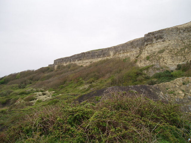 Eroding cliff near Ventnor