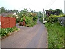 SX9886 : Green Lane, Exton by Derek Harper