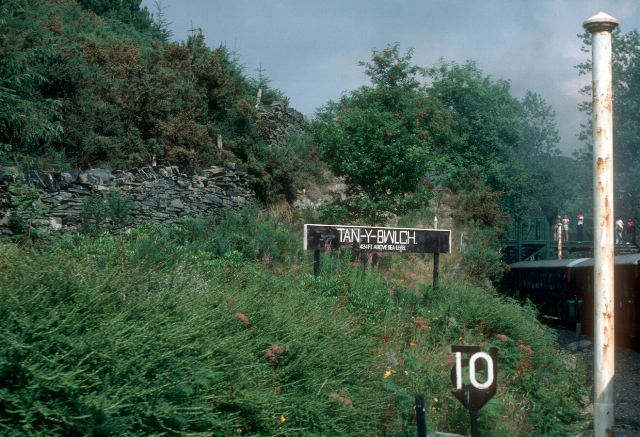 Tan y Bwlch 424ft above sea level, 1984