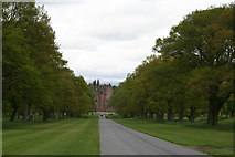 NO3847 : Main drive Glamis Castle by Val Vannet
