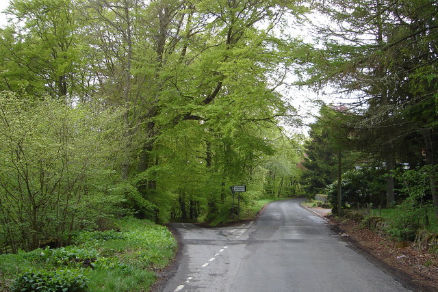 Wooded Road Junction near Den O Alyth