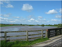 SE7975 : Ryton Rapids in flood May 23rd 2006. by Phil Catterall