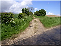 SE9238 : The Wolds Way by Andy Beecroft