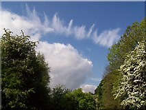 SD8611 : Cloud burst by R lee