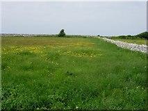 SY6869 : Top Fields by Hugh Venables