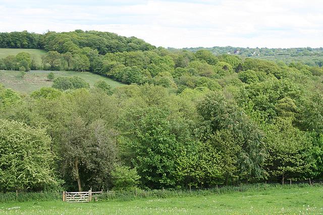 Clayhidon: footpath to Ringdown Common