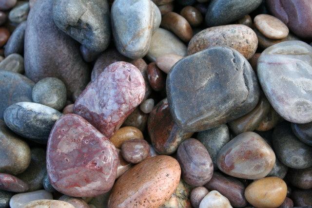 Jewels of the Boar's Head Shoreline, Morayshire