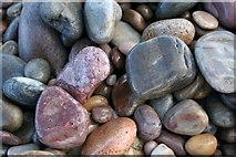NJ2967 : Jewels of the Boar's Head Shoreline, Morayshire by Des Colhoun