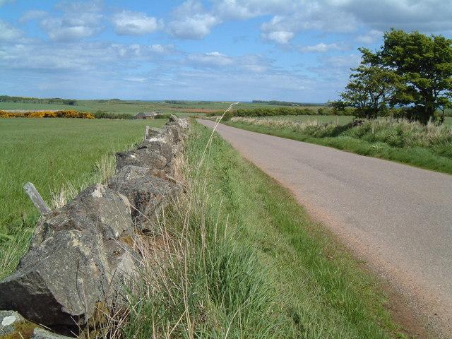 Dry Stane Dyke & Road near Mill of Barras
