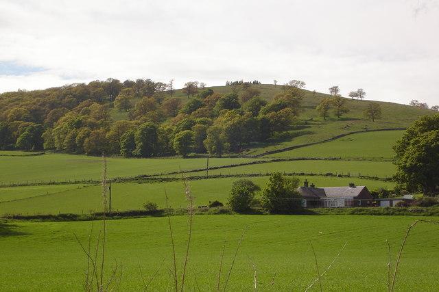 Barry Hill near Alyth