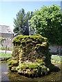 ST5644 : Dulcote fountain by Sharon Loxton