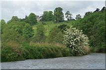 ST7166 : River Avon east of Kelston by Pierre Terre