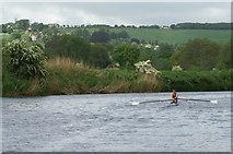 ST7166 : River Avon east of Kelston Park by Pierre Terre