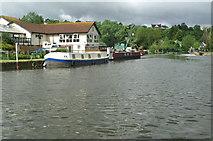 ST6866 : River Avon, above Kelston Lock by Pierre Terre