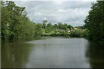 ST6867 : River Avon below Saltford Railway Bridge by Pierre Terre